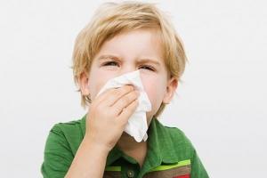 Cảm cúm - bệnh lý đường hồ hấp