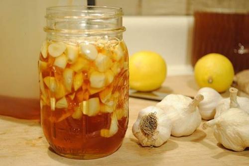 Bài thuốc trị viêm phế quản bằng tỏi và mật ong hiệu quả